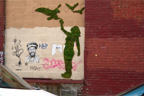 Mossgraffiti2