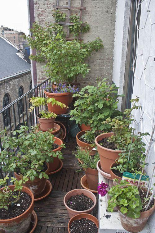 Balcony_spring2013